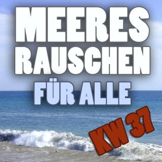 Meeresrauschen_KW37