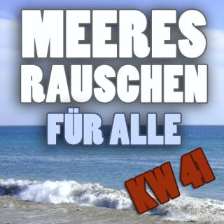 Meeresrauschen_KW41