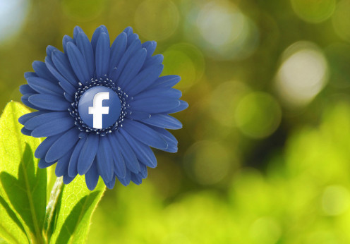 Facebook (mkhmarketing/Flickr)