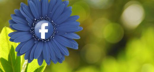 Facebook (mkhmarketing/Flickr)